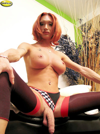 tranny attachment tranny mariana