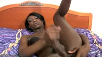 ebony shemale black shemale porn